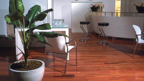Hardwood Flooring Tampa Bay Degeorge Room Improvement